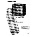 Sharp 37DM-23H (serv.man12) User Guide / Operation Manual